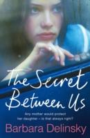 Secret Between Us - Delinsky Barbara - 9780007248094