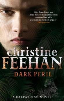 Dark Peril -  Christine Feehan - 9780349400105