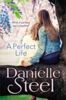 Perfect Life -  Danielle Steel - 9780552165884
