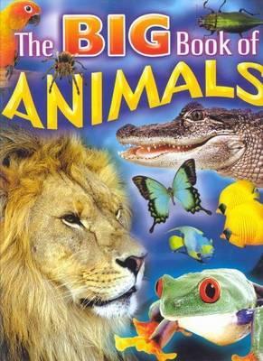 BIG BOOK OF ANIMALS - 9780709716365