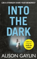 INTO THE DARK -  Alison Gaylin - 9780751553741