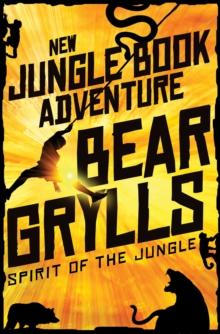 Spirit of the Jungle - 9781509828487
